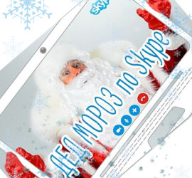 дед мороз по skype